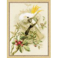 Риолис 1362 Белый какаду