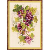 Риолис 1455 Виноградная лоза