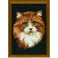 Риолис 765 Рыжий кот