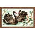 Риолис 806                       Черные лебеди