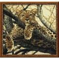 Риолис 937 Леопард