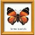 Риолис НВ094 Бабочка Нимфалида