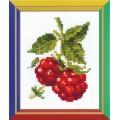 Риолис НВ143 Сладкаягода