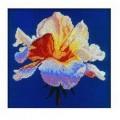 RTO М055 Коралловая роза