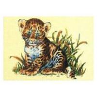 RTO R112 Леопардик