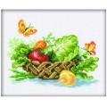 RTO С104 Корзина полная овощей