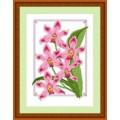 Русский фаворит ЦВ-018 Дикая орхидея
