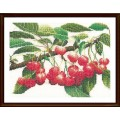 Thea Gouverneur 3014 Cherry Branch (Ветка вишни)