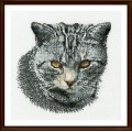 Thea Gouverneur 932 Cyprian Cat (Серый кот)