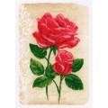 Vervaco 2720-70212 Elegant Rose (Розы)