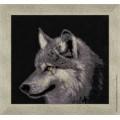 Золотое руно ДЖ-015                    Серый волк