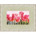 Золотое руно КН-003 Розовые тюльпаны