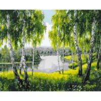 Allegro 4279 Картина по номерам 40*50 в раме Березы у реки Е569 (23 цвета, 3 звезды)