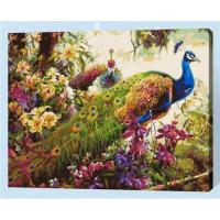 Allegro 4307 Картина по номерам 40*50 в раме Красота павлинов Е150 (24 цвета, 4 звезды)