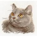 Алиса 0-134 Британский кот