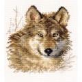 Алиса 1-27 Волк