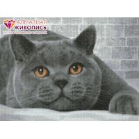 "Алмазная живопись АЖ-1463 ""Алмазная живопись"" АЖ-1463 ""Британский кот"" 40 х 30 см"
