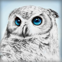 "Алмазная живопись АЖ-1549 ""Алмазная живопись"" АЖ-1549 ""Взгляд совы"" 25 х 25 см"