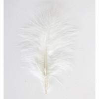 Астра HT108A22 Перо индейки, цвет белый