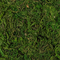 """Blumentag BDN-50 """"Blumentag"""" BDN-50 Декоративный наполнитель """"Мох натуральный"""" 50 г ± 5 г натуральный зеленый"""