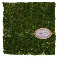 """Blumentag BKM-40 """"Blumentag"""" BKM-40 Лист из натурального мха 40 см зеленый"""