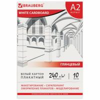 Brauberg 124764 Картон белый БОЛЬШОГО ФОРМАТА, А2 МЕЛОВАННЫЙ (глянцевый), 10 листов, в папке, BRAUBERG, 400х590 мм, 124764