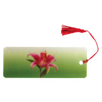 """Brauberg 128095 Закладка для книг с линейкой, 3D-объемная, BRAUBERG """"Удивительный цветок"""", с декоративным шнурком, 128095"""