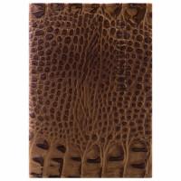 """Brauberg  Обложка для паспорта натуральная кожа лаковая, """"PASSPORT"""", светло-коричневая, BRAUBERG, 237197"""