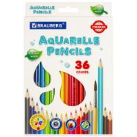 Brauberg  Карандаши цветные акварельные BRAUBERG PREMIUM AQUARELLE, 36 цветов, грифель мягкий 4 мм, 181674