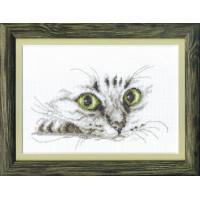 Чаривна Мить М-267 Взгляд кота