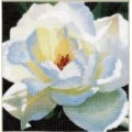 Чаривна Мить РК-034 Белая роза