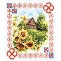 Чудесная игла 88-10 Защита дома