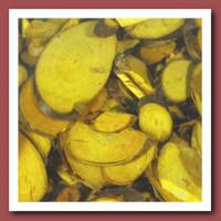 Прочие 7708972 Декоративные элементы, цвет: желтый