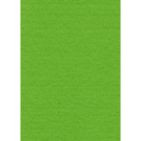 Efco  Лист фетра, 100% полиэстр, 30 х 45 см х 3 мм, 550 г/м, светло-зеленый