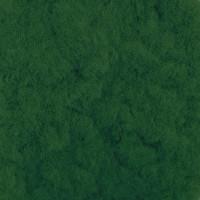 Fiorico FIO-B Пыльца бархатная FIO-B  5 г 06 Зелёный