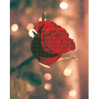 "ФРЕЯ ALV-16 Кристальная мозаика (алмазная вышивка) ""ФРЕЯ"" ALV-16 ""Роза для нее"" 50 х 40 см"
