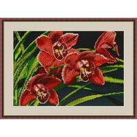 Galla Collection Л 313 Орхидеи