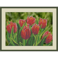 Galla Collection Л 326 Тюльпаны