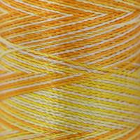 """Gamma  Нитки для вышивания """"Gamma"""" мультиколор M120/2 100% вискоза  400 я Set 6 желтые"""
