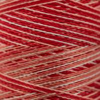 Gamma  Нитки для вышивания мультиколор M120/2 100% вискоза 5000 я Set 10 красные