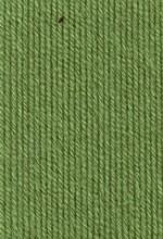 Пряжа для вязания Gazzal Baby Cotton (Газзал Беби Коттон) Цвет 3448 светлый хаки