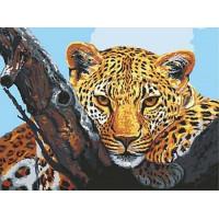Grafitec 10.501 Канва жесткая с рисунком GRAFITEC 10.501 Взгляд леопарда 30 x 40 см