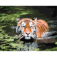 Hobruk  508125 HS0016 Набор для рисования по номерам 'Тигр в воде' 40*50см