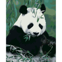 Hobruk  558511 HS0410 Набор для рисования по номерам ' Панда в бамбуке ' 40*50см