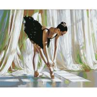 Hobruk  558989 HS0461 Набор для рисования по номерам 'Балерина' 40*50см