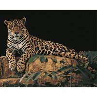 Hobruk  N0007572 HS0029 Набор для рисования по номерам 'Леопард на камне' 40*50см