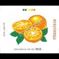 Искусница 8057 Апельсины (мини)