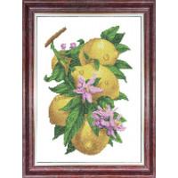 Каролинка КБЦ 3058 Рисунок-схема на ткани «Каролинка» КБЦ 3058 Ветка с лимонами
