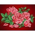 Каролинка КБЦ 4032 Аромат розы