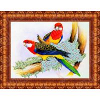 Каролинка КБЖ 4005 Попугаи,Ткань схема для бисера Рисунок-схема на ткани «Каролинка» КБЖ 4005 Попугаи